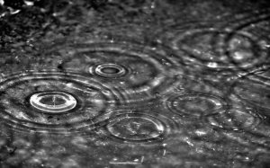 Autumn_rain_Windows_7_desktop_backgrounds2