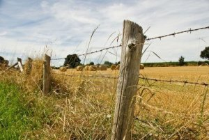 3441456-a-euro-style-hay-bale-close-to-a-barbed-wire-fence-in-rural-france
