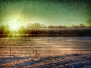 cold morning - Gretchen Peters