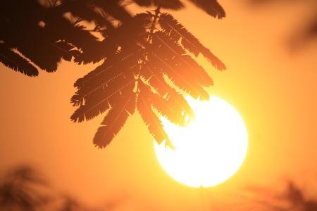 sun-866451_960_720