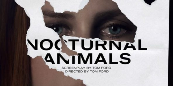 nocturnal-animals-main-header