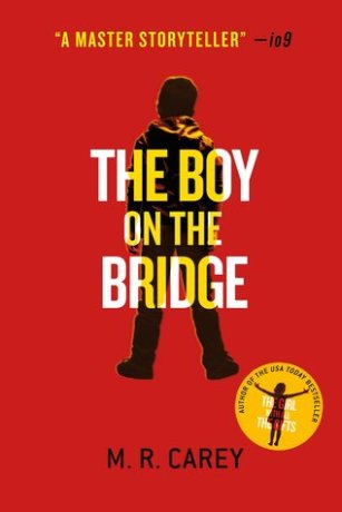 the boy on the bridge cover